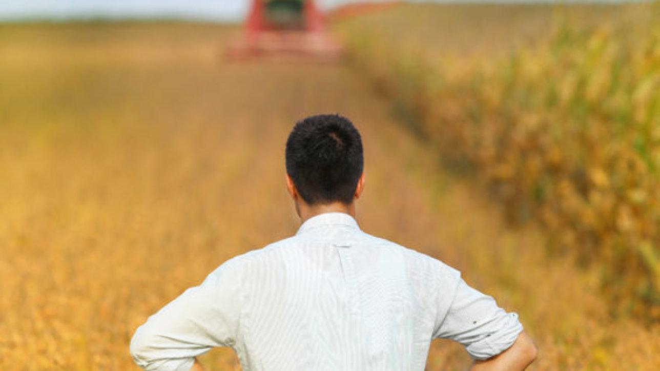 Soybean Farmer Reflects Effect Of Steel Tariffs